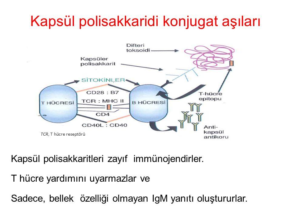 Kapsül polisakkaridi konjugat aşıları Kapsül polisakkaritleri zayıf immünojendirler. T hücre yardımını uyarmazlar ve Sadece, bellek özelliği olmayan I