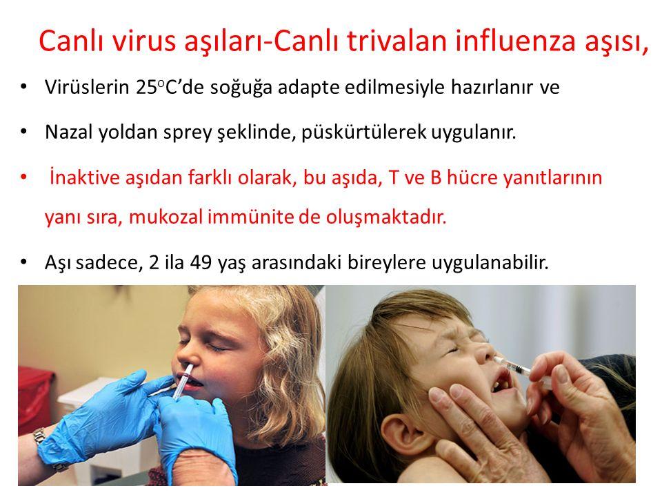 Canlı virus aşıları-Canlı trivalan influenza aşısı, Virüslerin 25 o C'de soğuğa adapte edilmesiyle hazırlanır ve Nazal yoldan sprey şeklinde, püskürtü