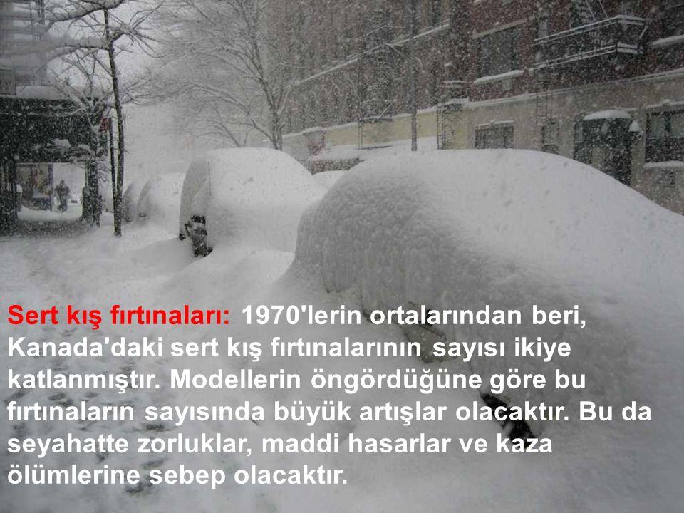 Sert kış fırtınaları: 1970'lerin ortalarından beri, Kanada'daki sert kış fırtınalarının sayısı ikiye katlanmıştır. Modellerin öngördüğüne göre bu fırt