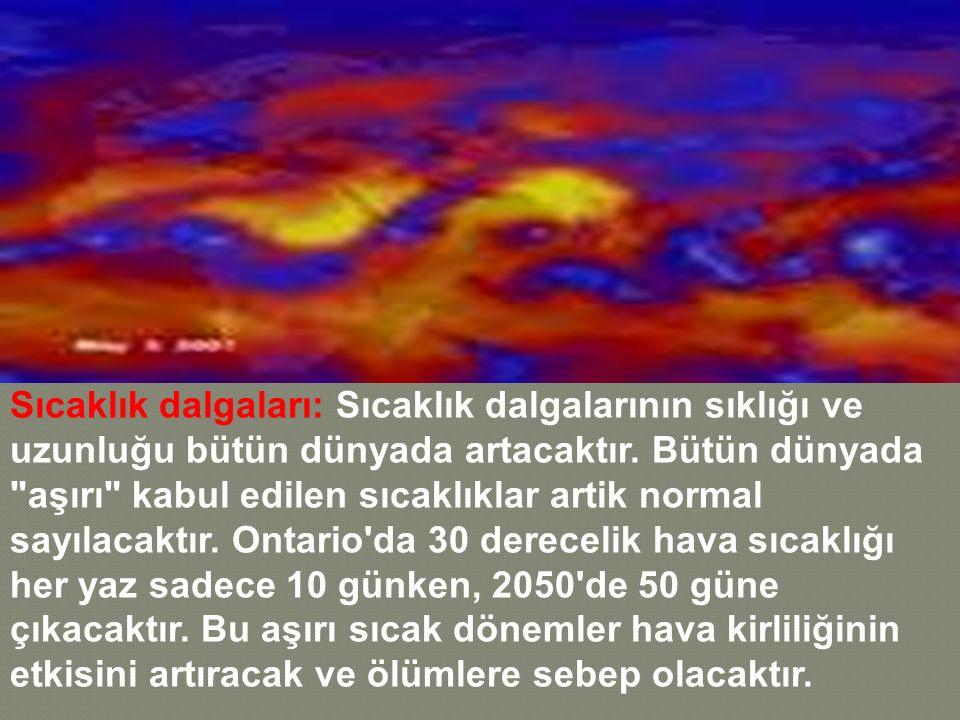 Sıcaklık dalgaları: Sıcaklık dalgalarının sıklığı ve uzunluğu bütün dünyada artacaktır. Bütün dünyada