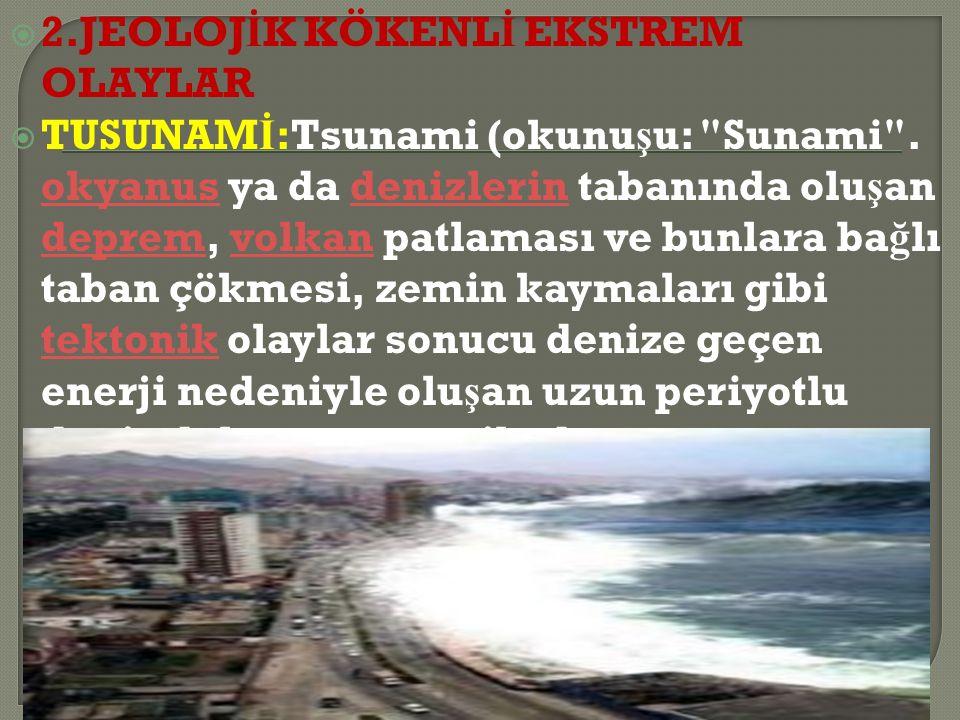  2.JEOLOJ İ K KÖKENL İ EKSTREM OLAYLAR  TUSUNAM İ :Tsunami (okunu ş u: