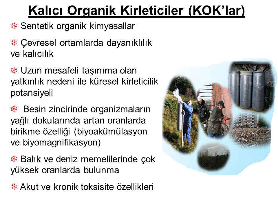 Kalıcı Organik Kirleticiler (KOK'lar)  Sentetik organik kimyasallar  Çevresel ortamlarda dayanıklılık ve kalıcılık  Uzun mesafeli taşınıma olan yat