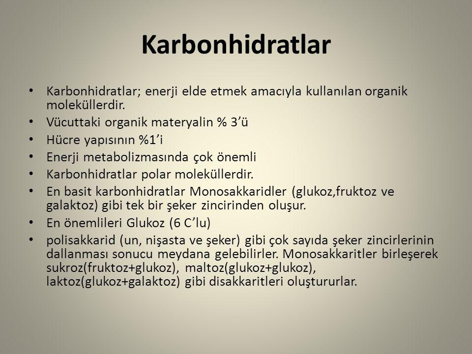 Karbonhidratlar Karbonhidratlar; enerji elde etmek amacıyla kullanılan organik moleküllerdir. Vücuttaki organik materyalin % 3'ü Hücre yapısının %1'i