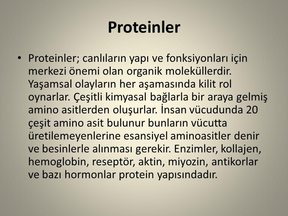 Proteinler Proteinler; canlıların yapı ve fonksiyonları için merkezi önemi olan organik moleküllerdir. Yaşamsal olayların her aşamasında kilit rol oyn