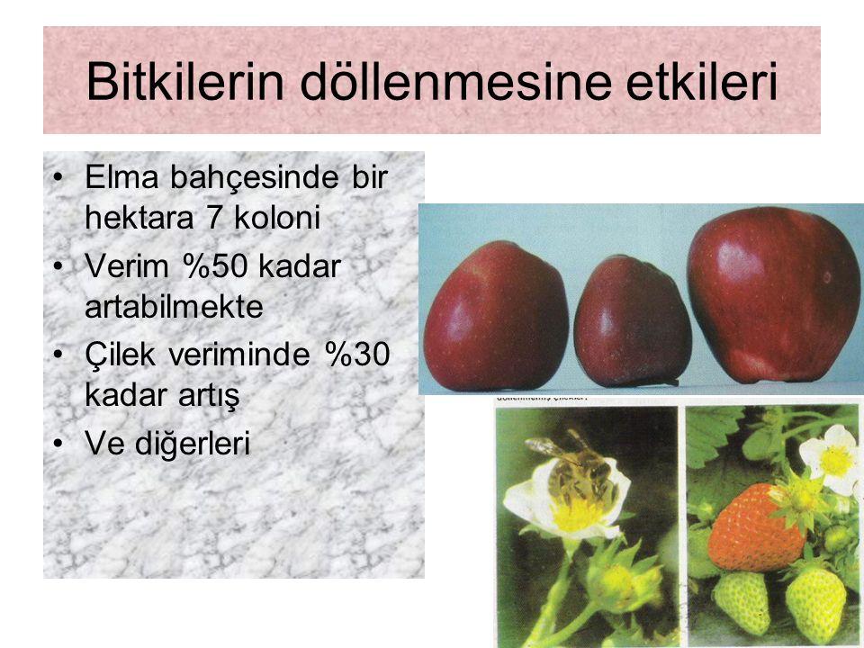Zararlı ballar Zararlı Bal: Arıların bazı bitkilerden (Ranunculus (düğün çiçekleri), Aesculus (atkestanesi), Rhododendron (ormangülü), Andromeda (yabani biber), Tulipa (lale), Papaver (Haşhaş), Nicotina (tütün), Digistolis (adi yüksükotu) aldıkları zehirli maddelerden dolayı yiyenlerde zehirlenme belirtileri gösterebilen ve deli bal, acı bal, tutar bal gibi adlar verilen ballardır.