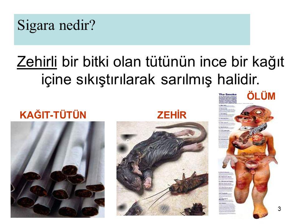 54 19 Mayıs 2008' den itibaren ARTIK TÜRKİYE'DE 4207 Sayılı Kanun Gereği, Tütün Ürünleri ve SİGARA İÇMEK YASAKTIR .