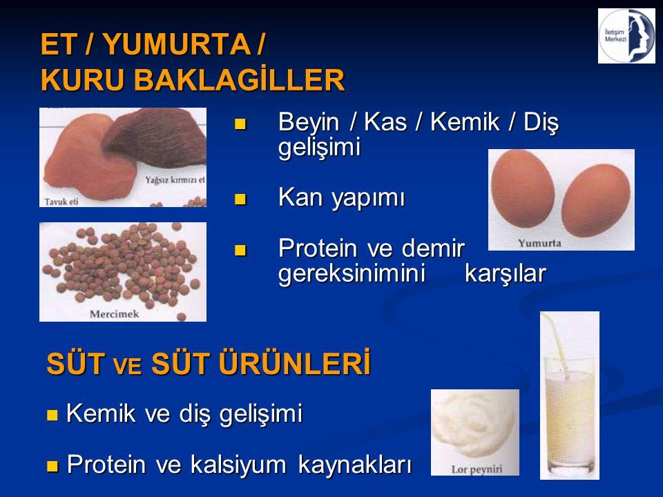 ET / YUMURTA / KURU BAKLAGİLLER Beyin / Kas / Kemik / Diş gelişimi Beyin / Kas / Kemik / Diş gelişimi Kan yapımı Kan yapımı Protein ve demir gereksinimini karşılar Protein ve demir gereksinimini karşılar SÜT VE SÜT ÜRÜNLERİ Kemik ve diş gelişimi Protein ve kalsiyum kaynakları Protein ve kalsiyum kaynakları