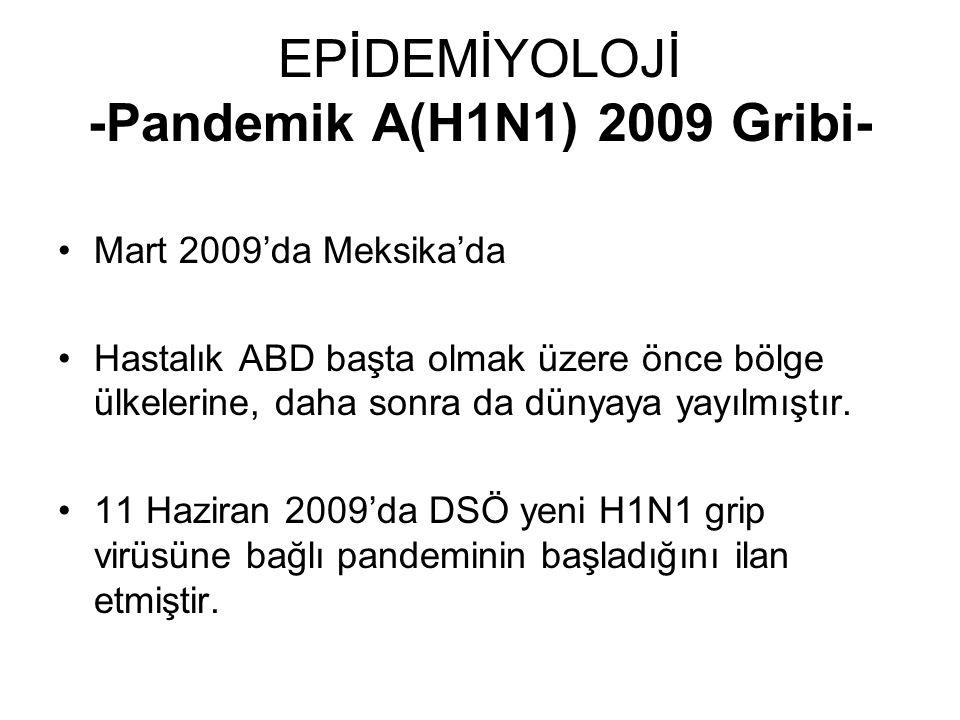 EPİDEMİYOLOJİ -Pandemik A(H1N1) 2009 Gribi- Mart 2009'da Meksika'da Hastalık ABD başta olmak üzere önce bölge ülkelerine, daha sonra da dünyaya yayılm