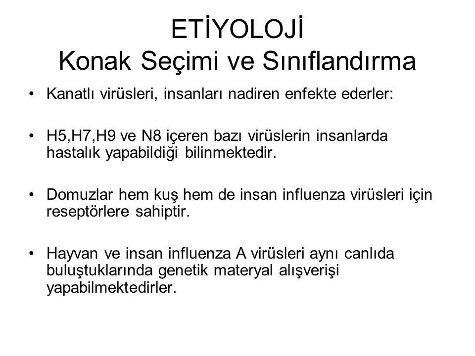 Pandemik A(H1N1) 2009 Gribinin yayılımı 26 Nisan 2009