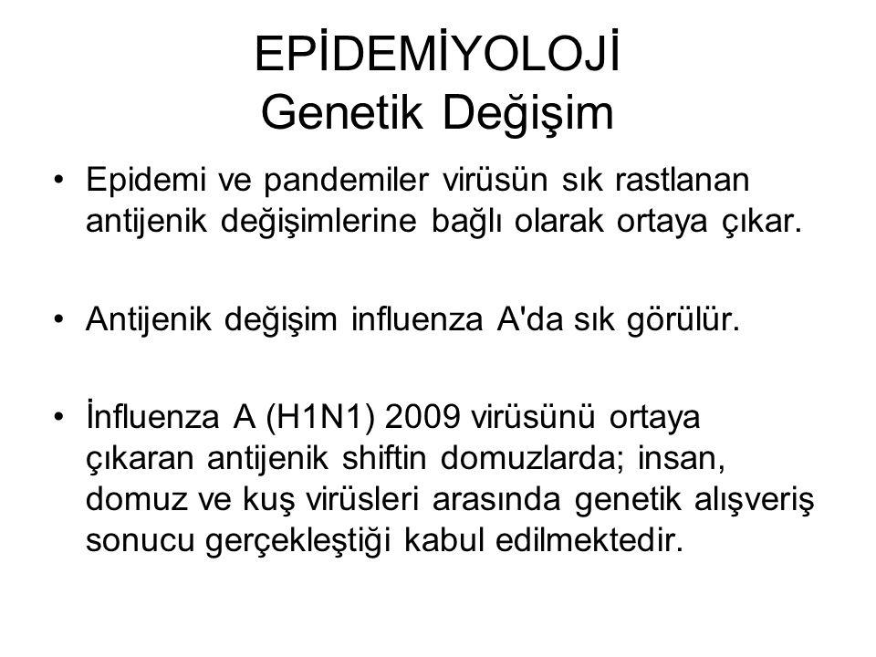 EPİDEMİYOLOJİ Genetik Değişim Antijenik drift Bir influenza alt tipinde her yıl veya birkaç yılda bir görülür.