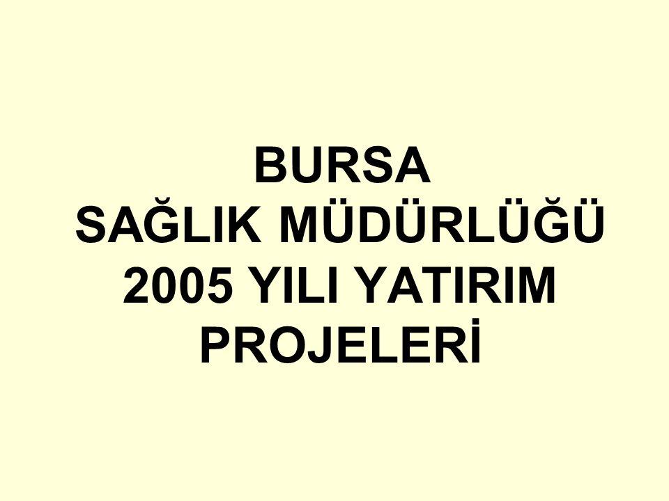 BURSA SAĞLIK MÜDÜRLÜĞÜ 2005 YILI YATIRIM PROJELERİ