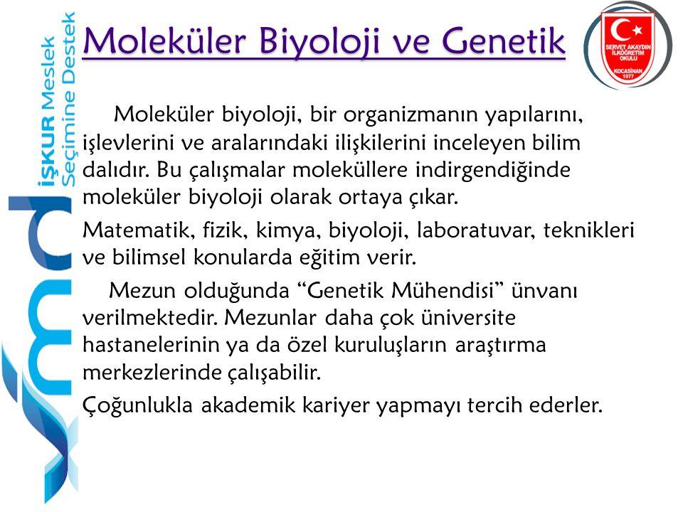 35 Moleküler Biyoloji ve Genetik Moleküler Biyoloji ve Genetik Moleküler biyoloji, bir organizmanın yapılarını, işlevlerini ve aralarındaki ilişkilerini inceleyen bilim dalıdır.