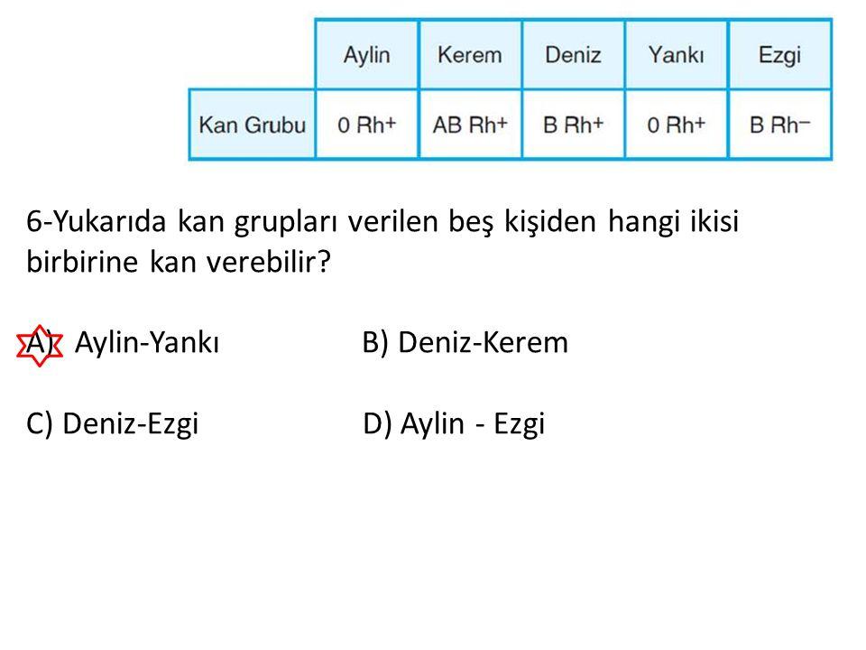 6-Yukarıda kan grupları verilen beş kişiden hangi ikisi birbirine kan verebilir? A)Aylin-Yankı B) Deniz-Kerem C) Deniz-Ezgi D) Aylin - Ezgi
