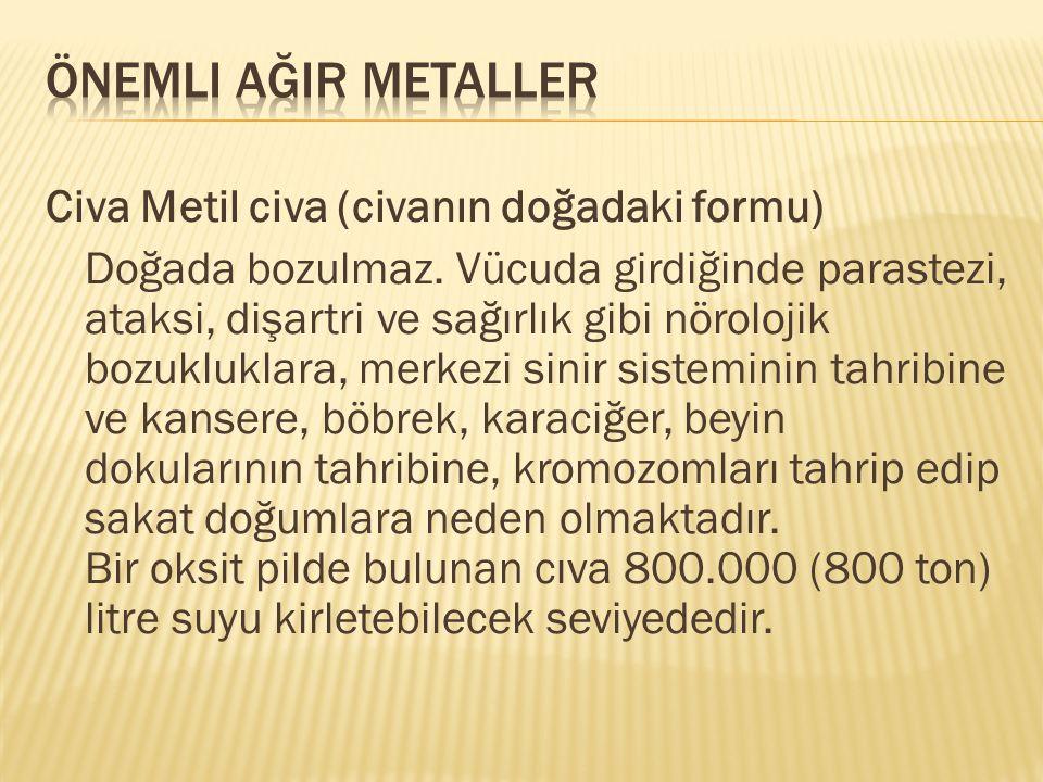*Kadmiyum En zehirli ağır metallerdendir.