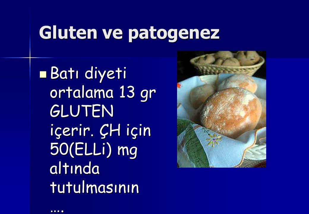 Gluten ve patogenez Batı diyeti ortalama 13 gr GLUTEN içerir.