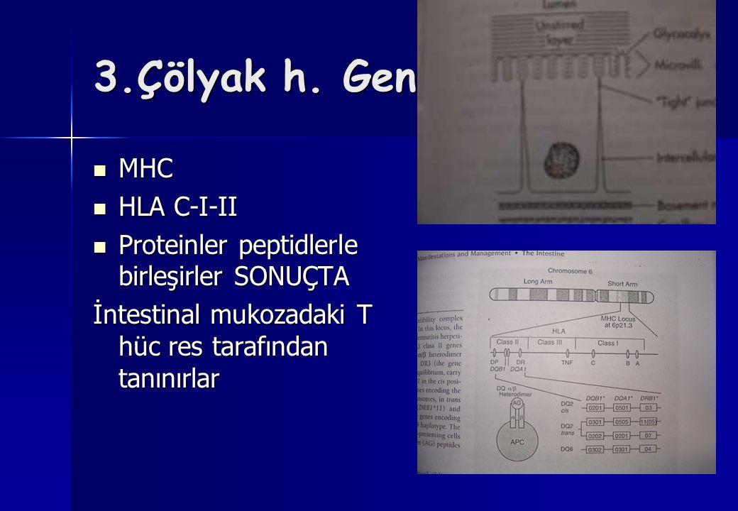 3.Çölyak h. Genetik yapı MHC MHC HLA C-I-II HLA C-I-II Proteinler peptidlerle birleşirler SONUÇTA Proteinler peptidlerle birleşirler SONUÇTA İntestina