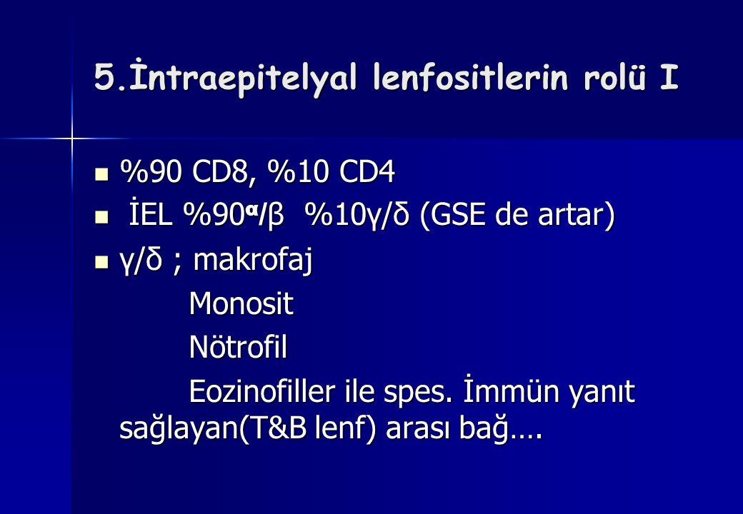 5.İntraepitelyal lenfositlerin rolü I %90 CD8, %10 CD4 %90 CD8, %10 CD4 İEL %90 α / β %10γ/δ (GSE de artar) İEL %90 α / β %10γ/δ (GSE de artar) γ/δ ;