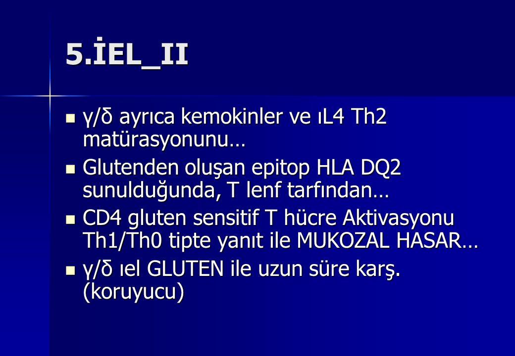 5.İEL_II γ/δ ayrıca kemokinler ve ıL4 Th2 matürasyonunu… γ/δ ayrıca kemokinler ve ıL4 Th2 matürasyonunu… Glutenden oluşan epitop HLA DQ2 sunulduğunda,
