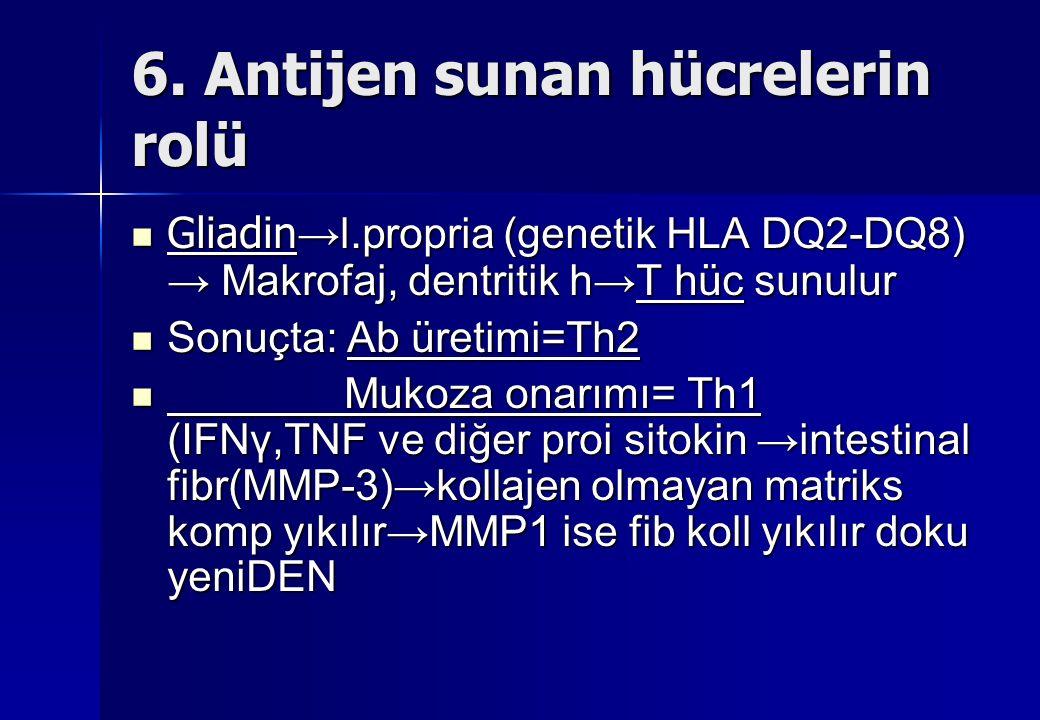 6. Antijen sunan hücrelerin rolü Gliadin → l.propria (genetik HLA DQ2-DQ8) → Makrofaj, dentritik h→T hüc sunulur Gliadin → l.propria (genetik HLA DQ2-