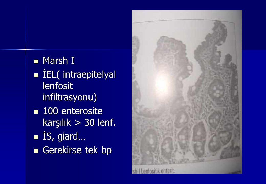 Marsh I Marsh I İEL( intraepitelyal lenfosit infiltrasyonu) İEL( intraepitelyal lenfosit infiltrasyonu) 100 enterosite karşılık > 30 lenf. 100 enteros