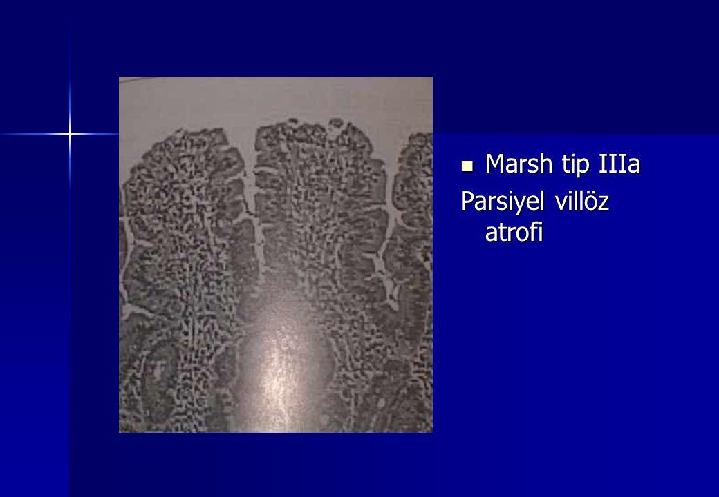 Marsh tip IIIa Marsh tip IIIa Parsiyel villöz atrofi