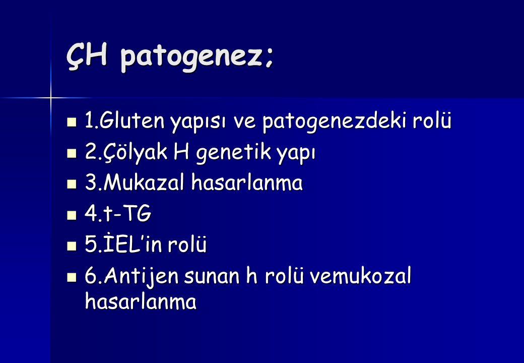 ÇH patogenez; 1.Gluten yapısı ve patogenezdeki rolü 1.Gluten yapısı ve patogenezdeki rolü 2.Çölyak H genetik yapı 2.Çölyak H genetik yapı 3.Mukazal hasarlanma 3.Mukazal hasarlanma 4.t-TG 4.t-TG 5.İEL'in rolü 5.İEL'in rolü 6.Antijen sunan h rolü vemukozal hasarlanma 6.Antijen sunan h rolü vemukozal hasarlanma