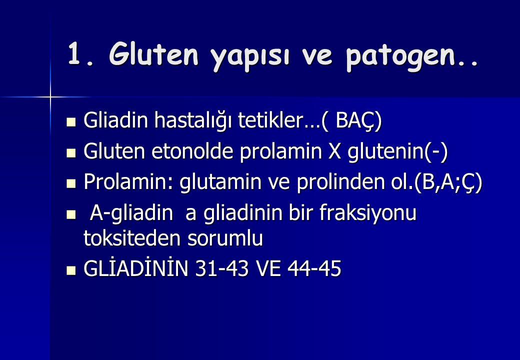 1. Gluten yapısı ve patogen.. Gliadin hastalığı tetikler…( BAÇ) Gliadin hastalığı tetikler…( BAÇ) Gluten etonolde prolamin X glutenin(-) Gluten etonol