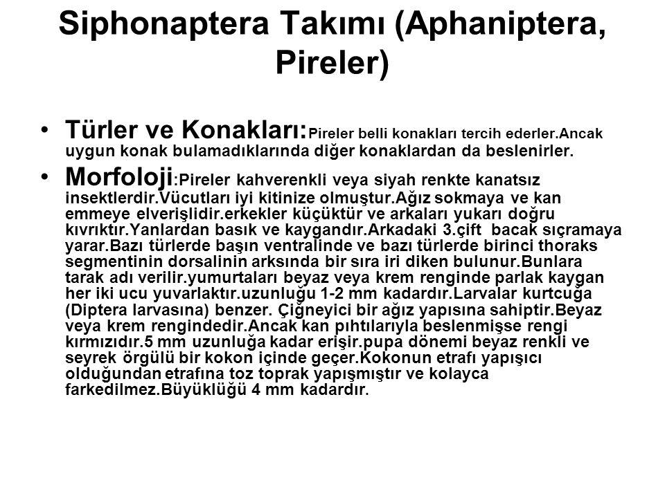Siphonaptera Takımı (Aphaniptera, Pireler) Türler ve Konakları: Pireler belli konakları tercih ederler.Ancak uygun konak bulamadıklarında diğer konakl