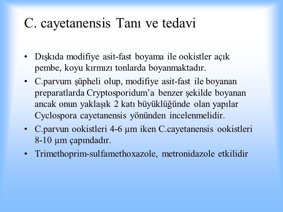 C. cayetanensis Tanı ve tedavi Dışkıda modifiye asit-fast boyama ile ookistler açık pembe, koyu kırmızı tonlarda boyanmaktadır. C.parvum şüpheli olup,