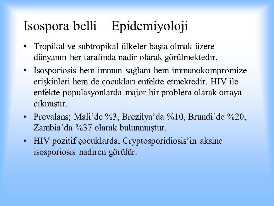 Isospora belli Epidemiyoloji Tropikal ve subtropikal ülkeler başta olmak üzere dünyanın her tarafında nadir olarak görülmektedir. İsosporiosis hem imm
