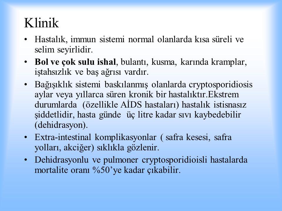 Klinik Hastalık, immun sistemi normal olanlarda kısa süreli ve selim seyirlidir. Bol ve çok sulu ishal, bulantı, kusma, karında kramplar, iştahsızlık