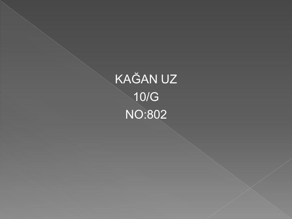 KAĞAN UZ 10/G NO:802