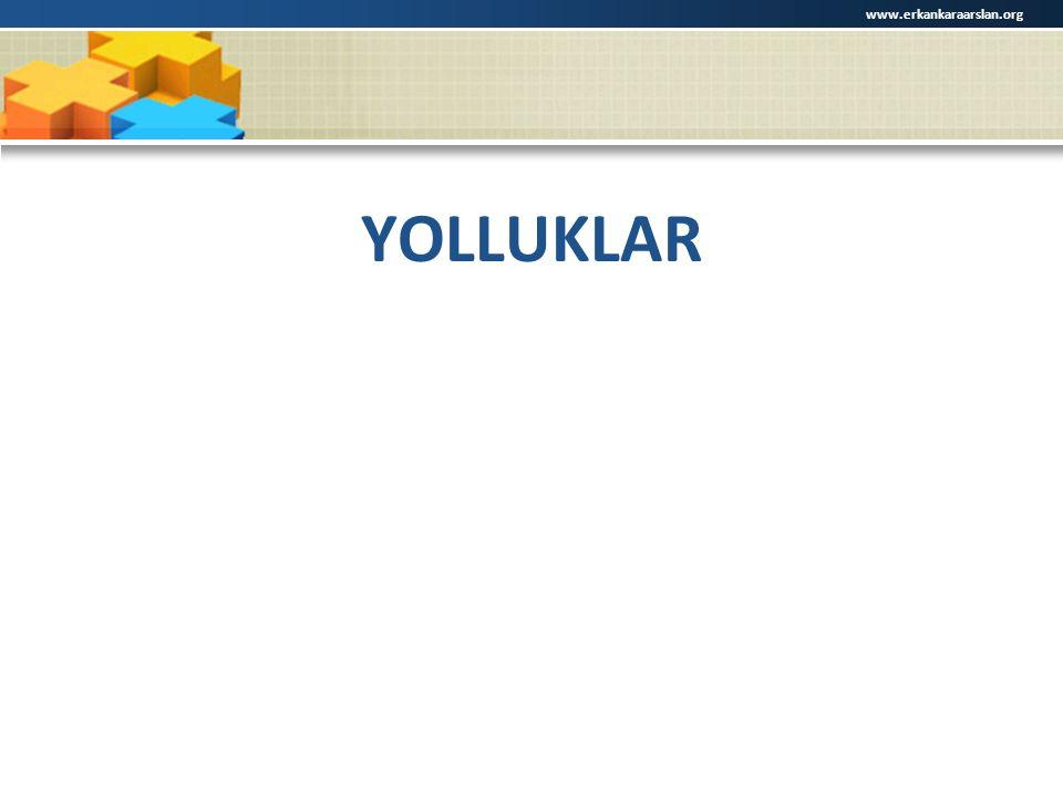 YOLLUKLAR www.erkankaraarslan.org