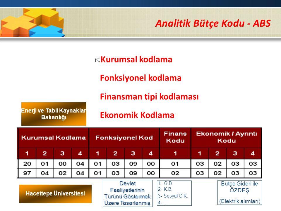 Analitik Bütçe Kodu - ABS   Kurumsal kodlama ã Fonksiyonel kodlama ã Finansman tipi kodlaması ã Ekonomik Kodlama Enerji ve Tabii Kaynaklar Bakanlığı Hacettepe Üniversitesi Devlet Faaliyetlerinin Türünü Göstermek Üzere Tasarlanmış 1- G.B.