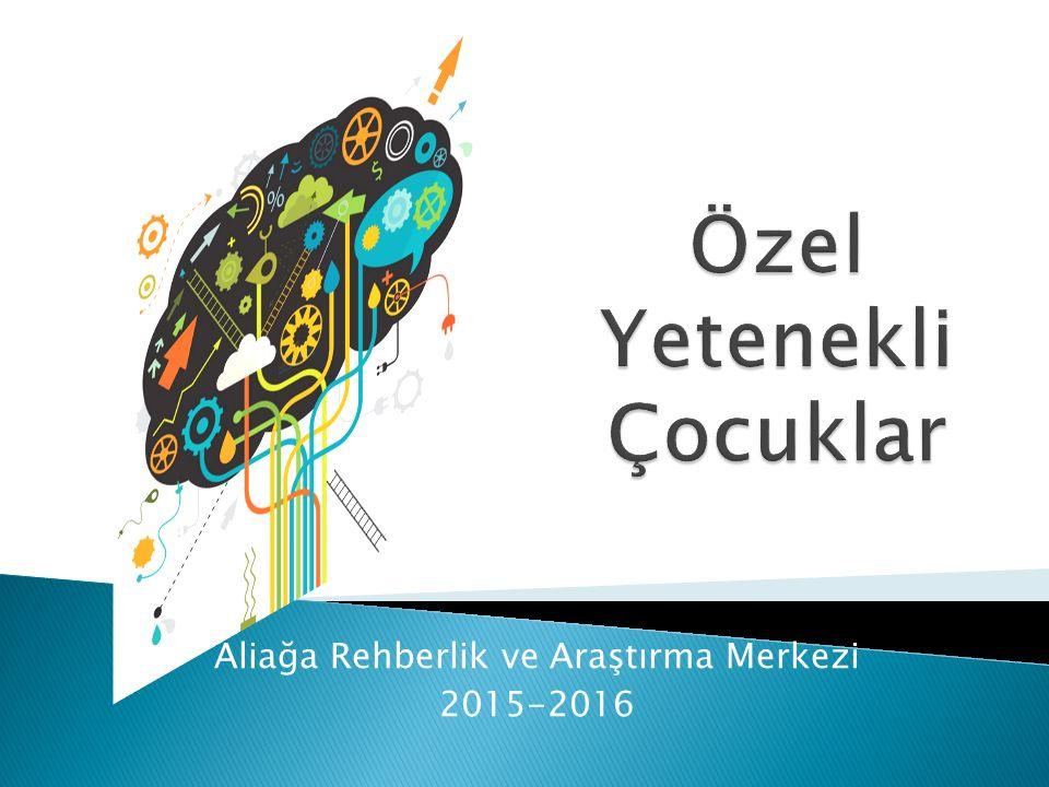 Aliağa Rehberlik ve Araştırma Merkezi 2015-2016