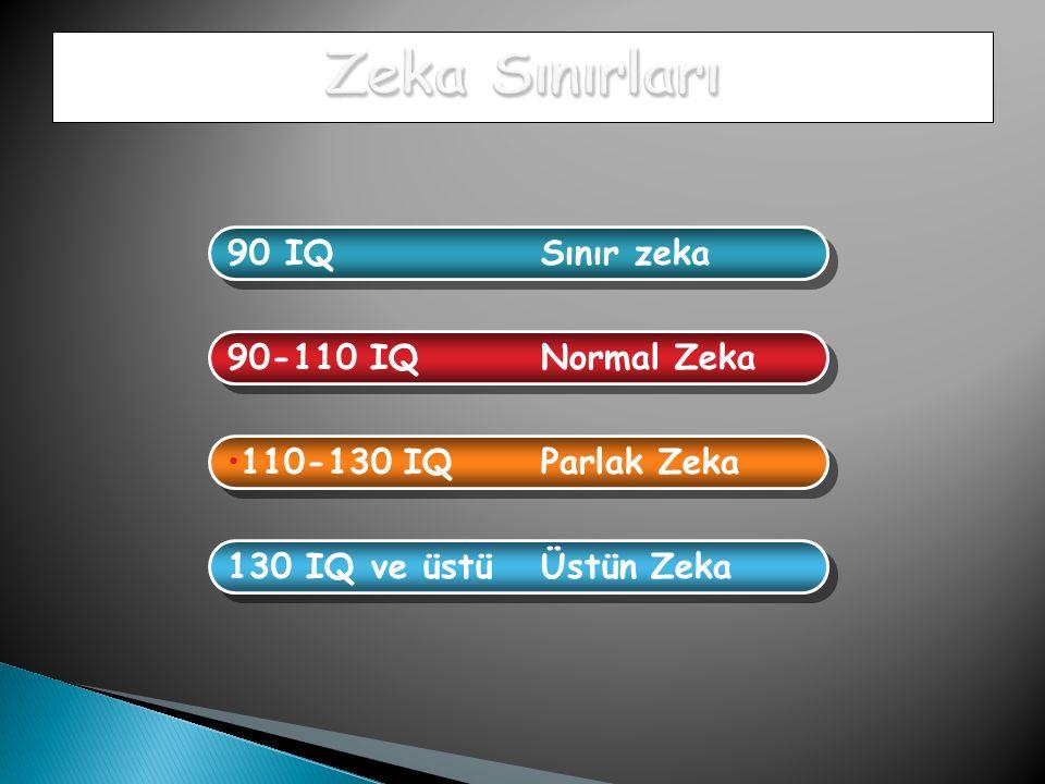 90 IQ Sınır zeka 90-110 IQ Normal Zeka 110-130 IQ Parlak Zeka 130 IQ ve üstü Üstün Zeka