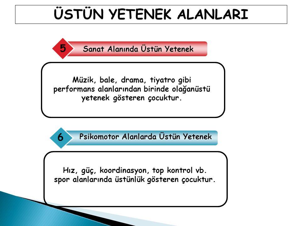 ÜSTÜN YETENEKLİ ÇOCUKLARIN SORUNLARI 4.