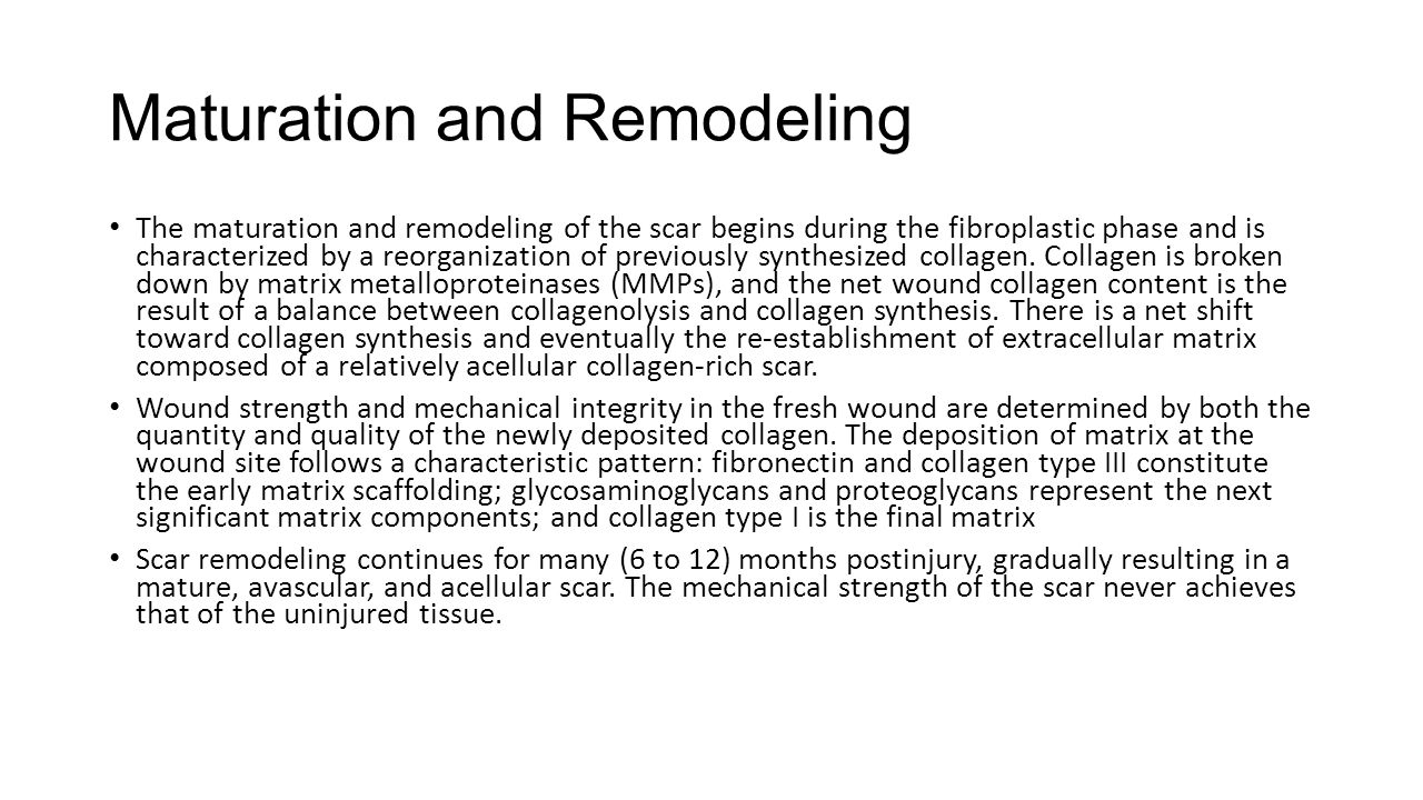 Wound Contraction All wounds undergo some degree of contraction.