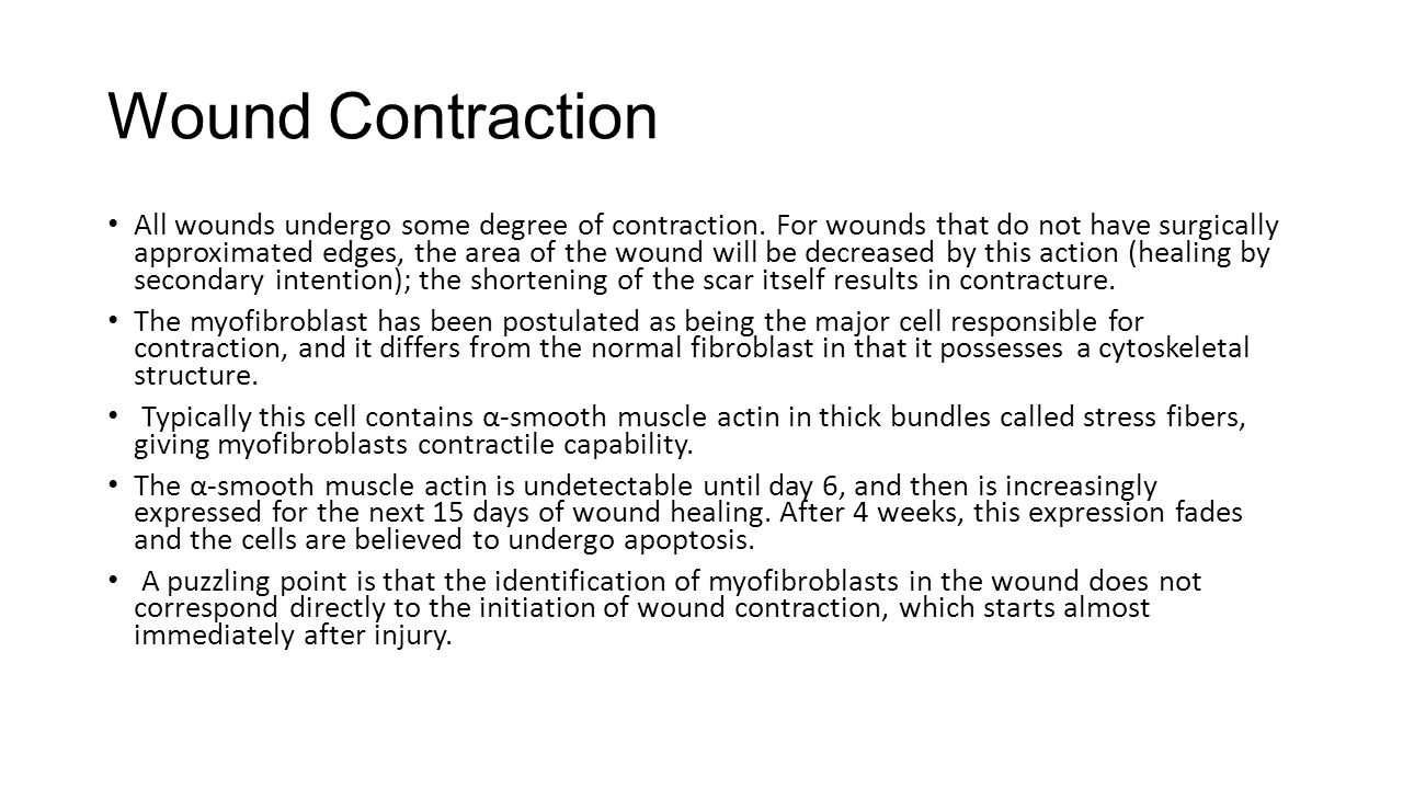 GENERAL CONSIDERATIONS The Mechanism of Wound Healing Acute wound healing normally proceeds from coagulation and inflammation, through angiogenesis, fibroplasia, matrix deposition (granulation tissue formation), collagen maturation, epithelialization, and finally wound contraction.