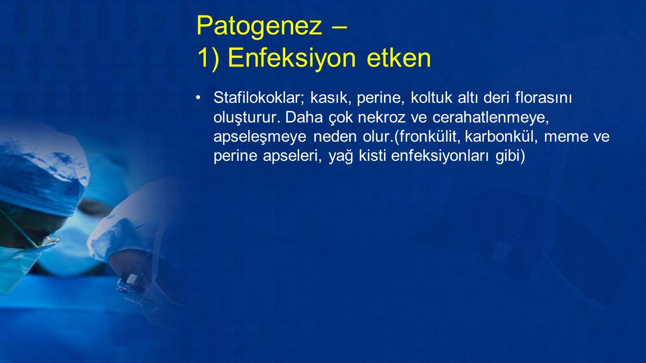 Patogenez – 1) Enfeksiyon etken Stafilokoklar; kasık, perine, koltuk altı deri florasını oluşturur.