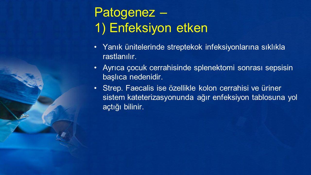 Patogenez – 1) Enfeksiyon etken Yanık ünitelerinde streptekok infeksiyonlarına sıklıkla rastlanılır.