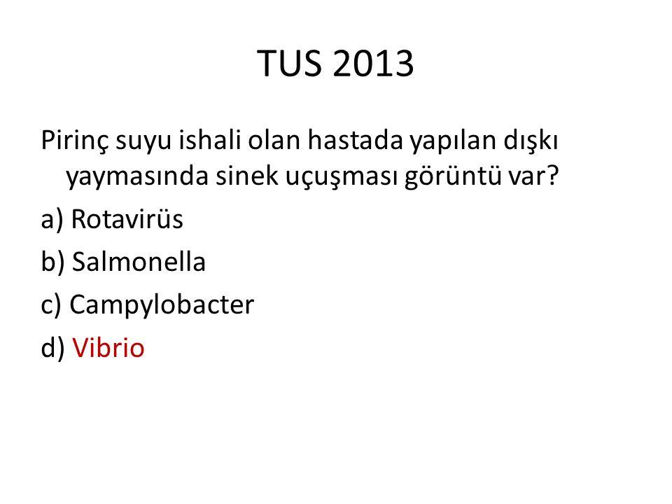 TUS 2013 Pirinç suyu ishali olan hastada yapılan dışkı yaymasında sinek uçuşması görüntü var? a) Rotavirüs b) Salmonella c) Campylobacter d) Vibrio