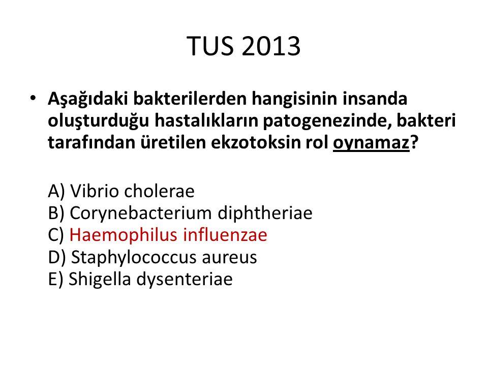 TUS 2013 Aşağıdaki bakterilerden hangisinin insanda oluşturduğu hastalıkların patogenezinde, bakteri tarafından üretilen ekzotoksin rol oynamaz? A) Vi