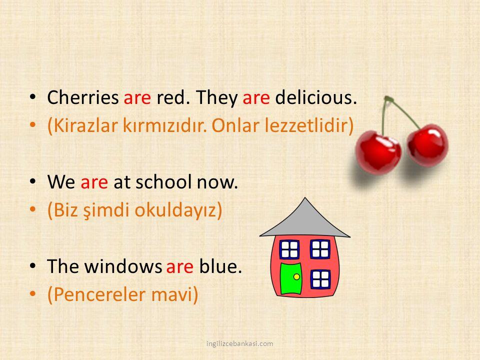 Cherries are red. They are delicious. (Kirazlar kırmızıdır. Onlar lezzetlidir) We are at school now. (Biz şimdi okuldayız) The windows are blue. (Penc