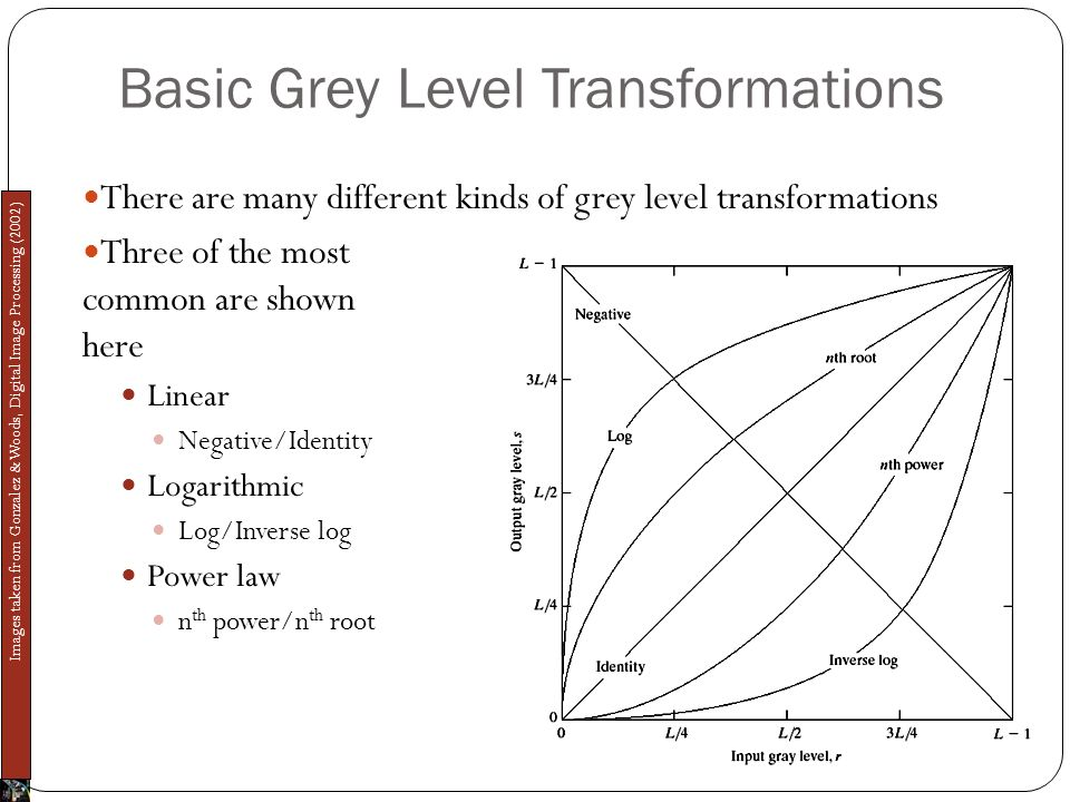 Basic Grey Level Transformations There are many different kinds of grey level transformations Three of the most common are shown here Linear Negative/Identity Logarithmic Log/Inverse log Power law n th power/n th root Images taken from Gonzalez & Woods, Digital Image Processing (2002)