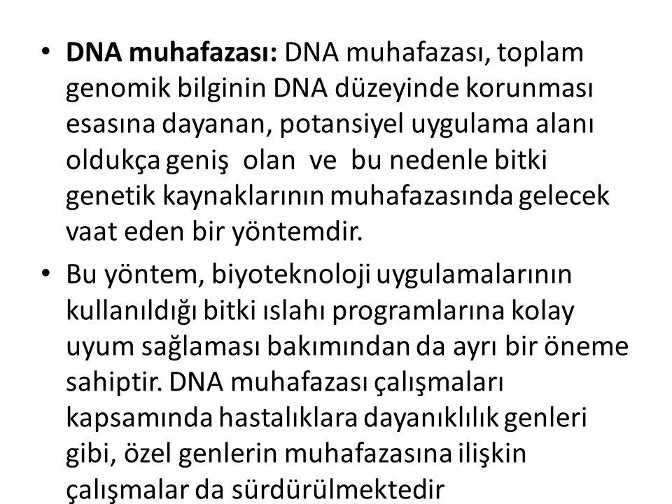 DNA muhafazası: DNA muhafazası, toplam genomik bilginin DNA düzeyinde korunması esasına dayanan, potansiyel uygulama alanı oldukça geniş olan ve bu ne