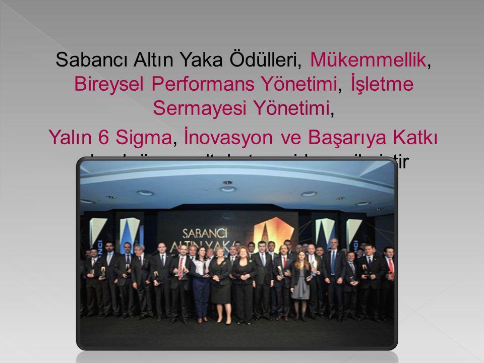 Sabancı Altın Yaka Ödülleri, Mükemmellik, Bireysel Performans Yönetimi, İşletme Sermayesi Yönetimi, Yalın 6 Sigma, İnovasyon ve Başarıya Katkı olmak üzere altı kategoride verilmiştir