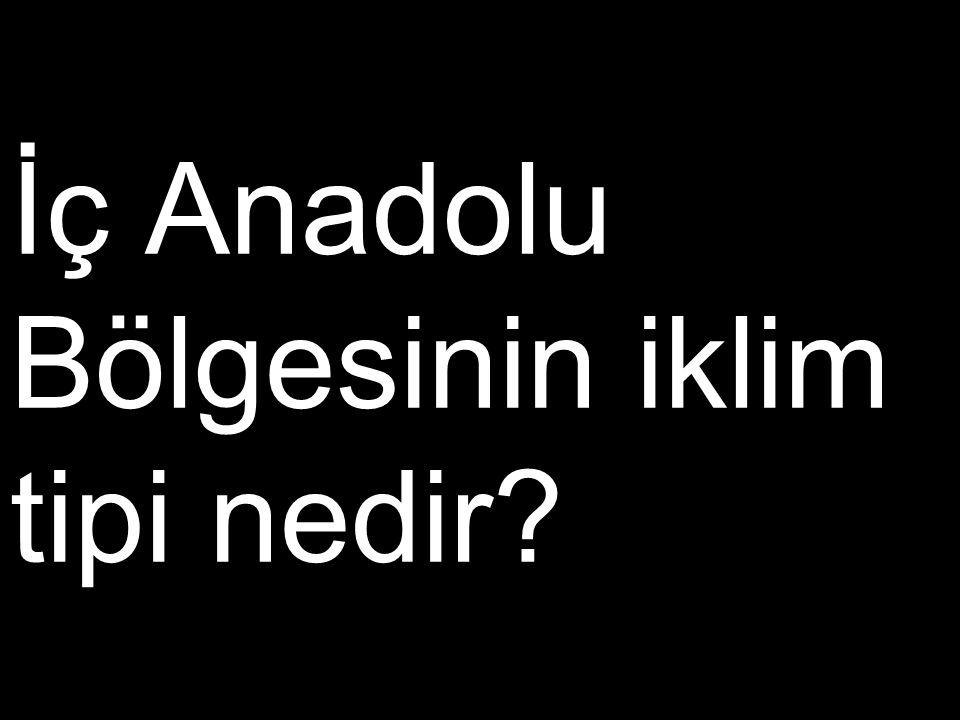 İç Anadolu Bölgesinin iklim tipi nedir?