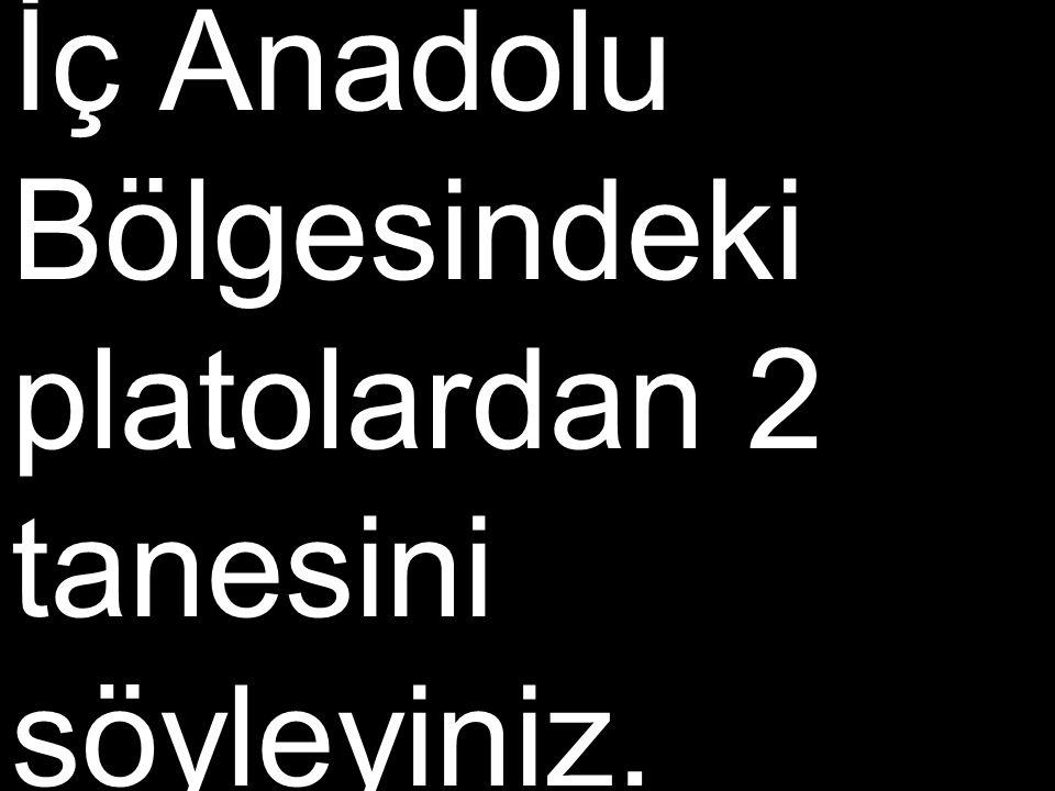 İç Anadolu Bölgesindeki platolardan 2 tanesini söyleyiniz.