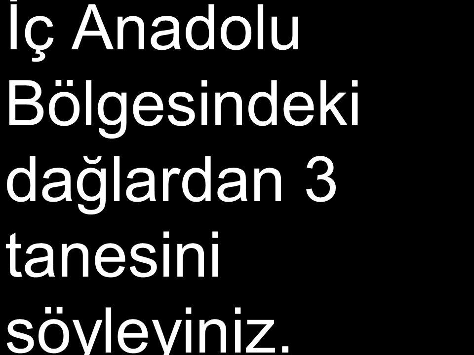 İç Anadolu Bölgesindeki dağlardan 3 tanesini söyleyiniz.